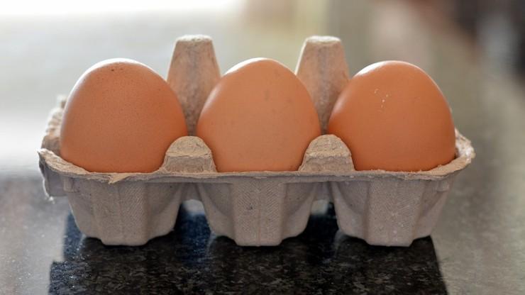 Polskie jajka zakażone salmonellą trafiły na rynek Unii Europejskiej