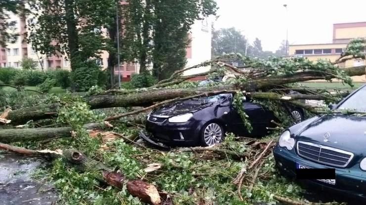 2016-07-15 Drzewo przewróciło się na samochód. Wichury nad Wielkopolską