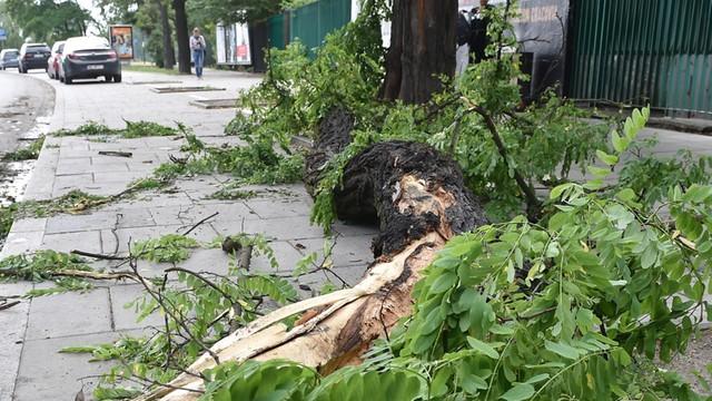 Łódzkie - ponad 5 tys. gospodarstw bez prądu po burzach nad regionem
