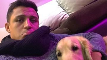 2017-07-31 Wenger nie wierzy w chorobę Alexisa? Wysłał lekarza do Chile