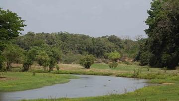 04-07-2017 13:45 Park narodowy usunięty z listy UNESCO. Bo już mu nic nie zagraża