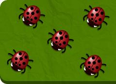Owady to najliczniejsza grupa zwierząt. W rozgrywanych podniebnych i naziemnych pojedynkach pokonuj przeciwników i zostań bohaterem swojej osady. Zagraj w 12 gry owady.